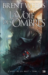 The Way of Shadows by Brent Weeks (French Edition)