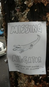 missing-alligator